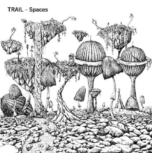 "TRAIL ""Spaces"" LP"